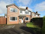 Thumbnail for sale in Highgate Drive, Newtownabbey