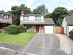 Thumbnail for sale in Gifford Close, Cwmbran, Torfaen