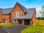 "Thumbnail to rent in ""Harborough"" at Plox Brow, Tarleton, Preston"
