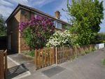 Thumbnail to rent in Thayers Farm Road, Beckenham
