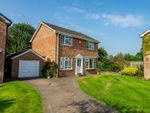 Thumbnail for sale in Sawyers Crescent, Copmanthorpe, York