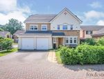 Thumbnail for sale in Firwood Close, Chandler's Ford, Eastleigh
