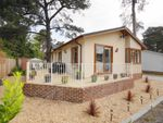 Thumbnail for sale in Lone Pine Drive, West Parley, Ferndown