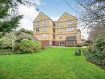 Thumbnail for sale in Homedrive House, The Drive, Hove, East Sussex
