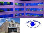 Thumbnail for sale in Fisher Street, 24-26, Cumbria Aquapets, Workington