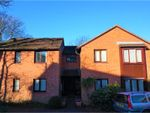 Thumbnail to rent in Manor Crescent, Honiton