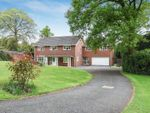 Thumbnail for sale in Caradon Close, Derriford, Plymouth