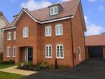 "Thumbnail to rent in ""Lichfield"" at Alwin Court, Great Denham, Bedford"