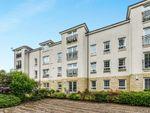 Thumbnail to rent in Braid Avenue, Cardross, Dumbarton