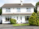 Thumbnail to rent in Castle Avenue, Moira, Craigavon, County Armagh