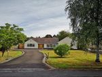 Thumbnail to rent in Anglesey Drive, Poynton, Stockport