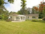 Thumbnail for sale in Ashley Heath, Ringwood, Hampshire
