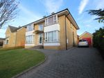 Thumbnail to rent in Hanover Chase, Bangor