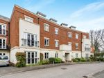 Thumbnail to rent in Holly Hill, Bassett, Southampton