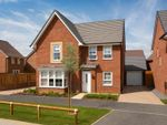 "Thumbnail to rent in ""Cambridge"" at Green Lane, Yarm"