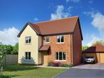 Thumbnail to rent in Palfrey Place, Halesworth
