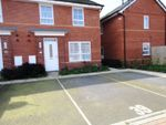 Thumbnail for sale in Colman Crescent, Hull