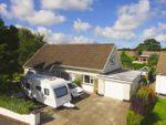 Thumbnail to rent in Bryn Bedw, Llechryd, Cardigan