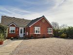 Thumbnail for sale in Darrell Court, Hedon, Hull