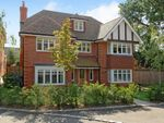 Thumbnail to rent in Wrens Hill, Oxshott