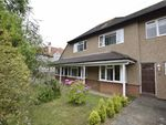 Thumbnail for sale in Westville Road, Bexhill-On-Sea, East Sussex
