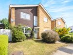 Thumbnail to rent in St. James Park, Chelmsford
