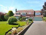 Thumbnail to rent in Ridgeway Lane, Lymington, Hampshire