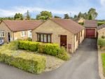 Thumbnail to rent in Westmorland Drive, Desborough, Kettering
