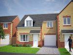 Thumbnail to rent in Plot 93, Fergus, Briar Lea Park, Longtown, Carlisle