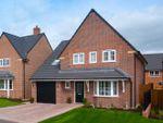 "Thumbnail for sale in ""Harborough"" at Blackpool Road, Kirkham, Preston"