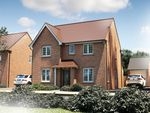 """Thumbnail to rent in """"The Berrington"""" at Oakley Wood Road, Bishops Tachbrook, Leamington Spa"""