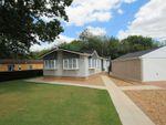 Thumbnail to rent in Shepherds Grove Park, Stanton, Bury St. Edmunds