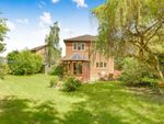 Thumbnail for sale in Ash Close, Lingfield