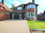 Thumbnail for sale in Walton Park, Bexhill-On-Sea