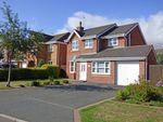 Thumbnail to rent in 23, Avondale Crescent, Pandy, Wrexham, Wrexham