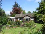 Thumbnail for sale in Rillside, Sunnyside, Ormiston, Hawick