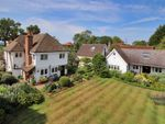 Thumbnail for sale in Chitcombe Road, Broad Oak Brede, East Sussex