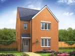 """Thumbnail to rent in """"The Lumley"""" at Lime Avenue, Oulton, Lowestoft"""