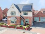 Thumbnail for sale in Osprey Drive, Corby