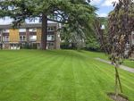 Thumbnail for sale in Cotswold Court, Horsham, West Sussex
