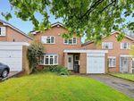 Thumbnail to rent in Harrisons Green, Edgbaston, Birmingham