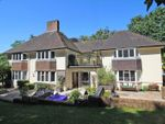Thumbnail for sale in Blackbush Road, Milford On Sea, Lymington
