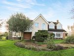 Thumbnail for sale in Gambles Green, Terling, Chelmsford, Essex
