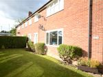 Thumbnail for sale in North Farm Road, Farnborough, Hampshire