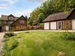 Thumbnail for sale in Abinger Bottom, Abinger Common, Dorking, Surrey