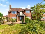 Thumbnail for sale in Forest Lane, Punnetts Town, Heathfield, East Sussex