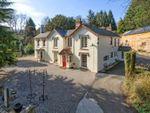 Thumbnail for sale in Llanfair Caereinion, Powys