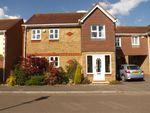 Thumbnail for sale in Tanbridge Park, Horsham, West Sussex