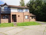 Thumbnail to rent in Wedgwood Avenue, Blakelands