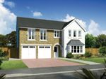 """Thumbnail to rent in """"Melton"""" at Hunter's Meadow, 2 Tipperwhy Road, Auchterarder"""